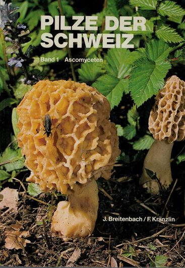 Pilze der Schweiz. Band 1: Ascomyceten. 1981. 390 Arten auf Farbbildern. Zahlreiche Mikrozeichnungen. 313 S. 4to. Gebunden. - In Deutsch.