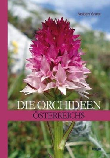 Die Orchideen Österreichs. Mit 72 Orchideenwanderungen. 2013. sehr viele Farbphotogr. (Pflanzen und Habitate). Verbreitungs- 479 S. gr8vo. Hardcover.